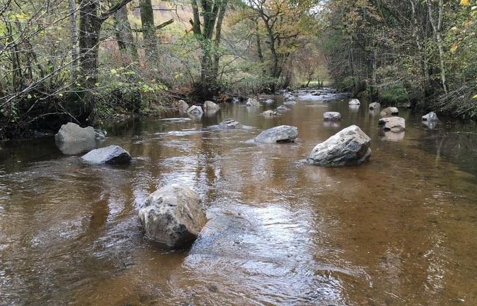 Video des travaux de diversification des habitats